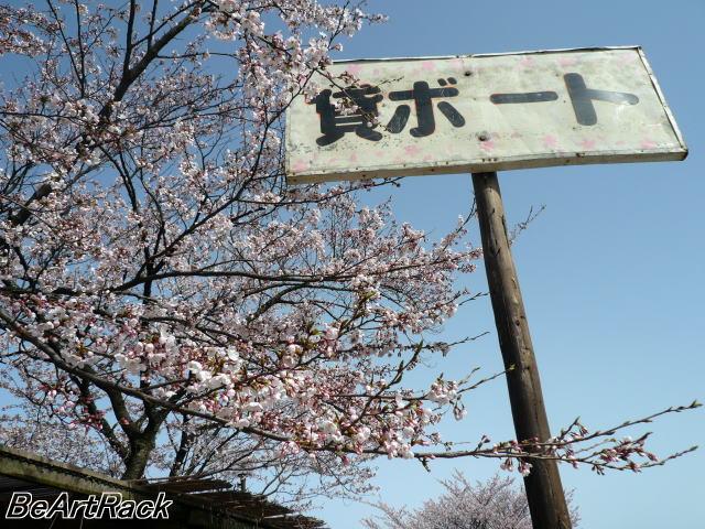 2010(平成22)年4月13日(火) 花見 P1090977.JPG