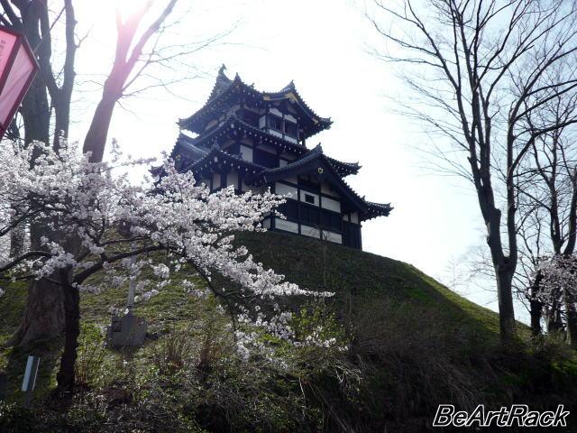 2010(平成22)年4月13日(火) 花見 P1090978.JPG
